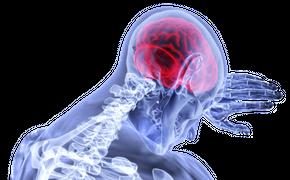 Учёные назвали вещество, которое помогает выжить в стрессовой ситуации