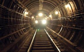 На серой ветке московского метро упал на рельсы пассажир