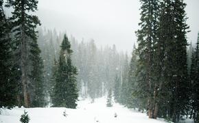 МЧС предупреждает жителей Подмосковья о снеге
