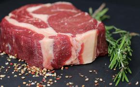 Диетолог прокомментировал появление искусственного мяса