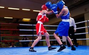 В Сыктывкаре стартовал республиканский турнир по боксу