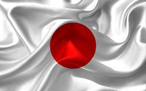 В Японии упал с дороги автобус с группой школьников