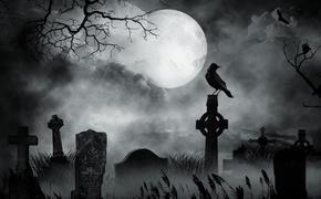 Сотрудник банка похитил деньги из сейфа, и спрятал их  под надгробием заброшенной могилы на кладбище