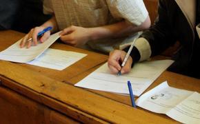 В Госдуме оценили возможность сдачи ЕГЭ в онлайн-формате