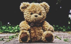 На севере Крыма пропала шестилетняя девочка