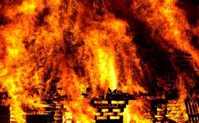 При пожаре в Саратовской области погибли двое детей