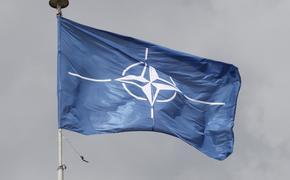 В НАТО рассказали о работе над украинской военной реформой