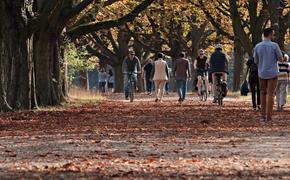 """Метеорологи: ноябрь самый """"депрессивный"""" месяц в году"""
