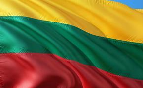 Президент Литвы помиловал двух россиян, которые были осуждены за шпионаж