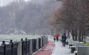В Москву через несколько дней придет климатическая зима, но пока без снега