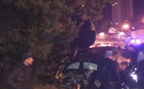 В Сочи 16-летний водитель  Mercedes  на высокой скорости врезался в дерево и погиб
