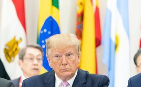 Американские журналисты опасаются за свою жизнь из-за угроз Дональда Трампа