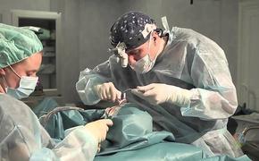 Бодипозитив или хирургическая пластика: какая из тенденций возьмет верх по мнению экспертов?