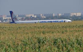 Пилоты, посадившие самолет в кукурузном поле, получат завтра звезды Героев России