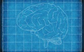 Названа причина преждевременного старения мозга