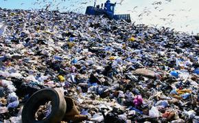 Словенцы совершили мусорную революцию