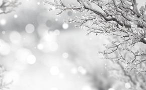 Синоптики пообещали столичным жителям ледяные дожди
