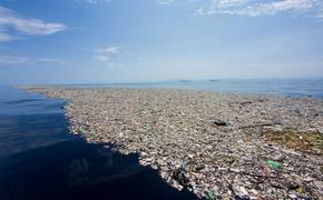 Рост потребления в два раза быстрее убивает экологию планеты