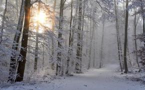 Синоптики: снег в Москву придет не скоро