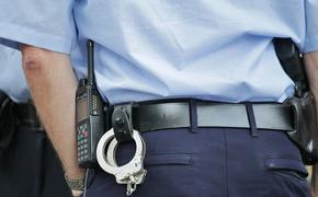 Преступник из Ленобласти задержан полицией