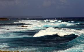 У побережья Калифорнии обнаружили тысячи загадочных дыр