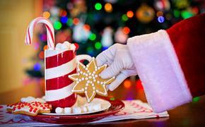 Медики: Почему перед новогодней ночью нужно поесть и проветрить дом