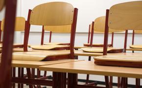 Учитель оскорбил ученика, якобы  защищая  депутата