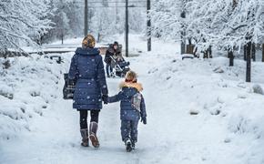 Синоптики предупреждают о мокром снеге в Москве