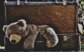 В Невском районе Петербурга участковый спас ребенка от невменяемой матери