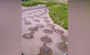 Загадочные круги на песке обнаружили в диком заповеднике Мексики