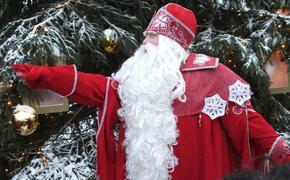 Всероссийский Дед Мороз заявил, что готов пригласить к себе экоактивистку Грету Тунберг