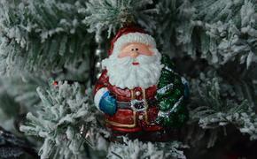 В Кремль доставили главную новогоднюю елку страны