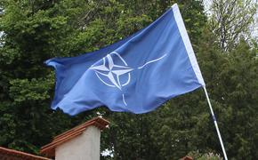 В НАТО сообщили о