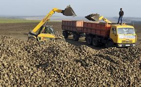 Россия и Украина начинают «сахарную войну»
