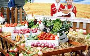 На Кубани набирает обороты аграрный туризм