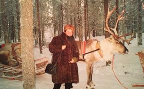 Новый Год в Лапландии…