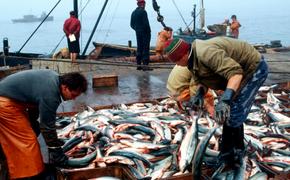 Ученые заявили об опасности рыбных палочек и