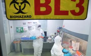 В Китае зафиксирован третий случай смерти от неизвестного вируса. Стоит ли нам его бояться?