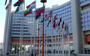 75-летию освобождения узников Освенцима посвятили выставку в штаб-квартире ООН