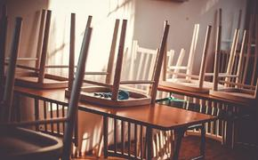 В Челябинской области двое девятиклассников готовили теракт в школе