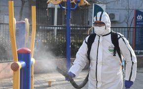 Возможный срок появления китайского коронавируса в России раскрыли в Минздраве