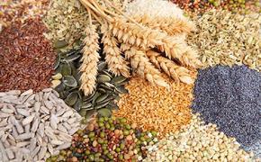 Больше половины российских овощей имеют иностранные  корни
