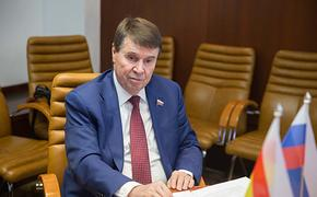 Сенатор от Крыма Сергей Цеков предложил ужесточить наказания за беспорядки в России, как во Франции
