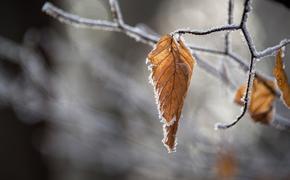 Синоптики обещают россиянам морозы