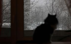 Синоптики поведали о погоде в Москве на предстоящей неделе