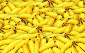 В Росконтроле рассказали, как выбрать качественные бананы