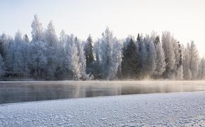 Тела двух пропавших детей нашли в реке в Ростовской области
