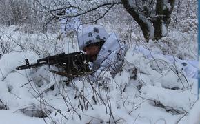 СМИ сообщили о «резкой активизации» воюющих в Донбассе ВСУ на луганском фронте