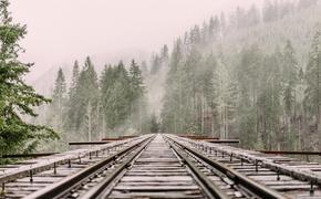 Пассажирский поезд сбил мужчину в Подмосковье