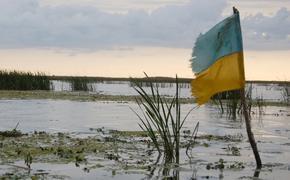 Глава Минобороны Украины Андрей Загороднюк сообщил, что ВСУ вынужденно покинули свой опорный пункт в Донбассе
